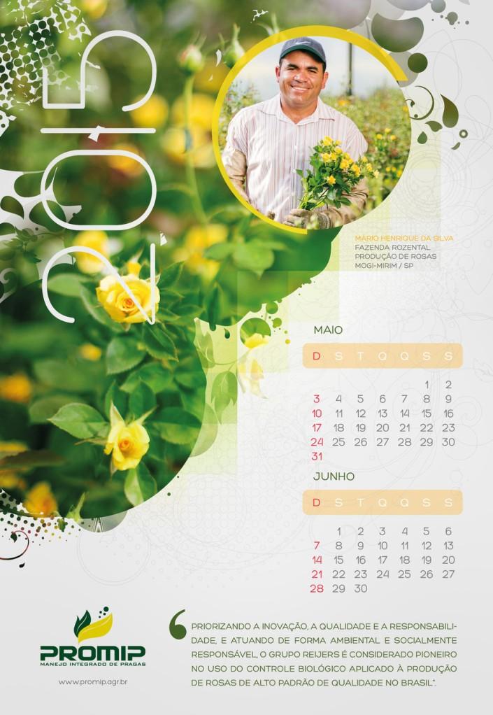 Calendário Promip 2015
